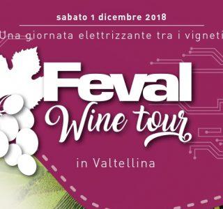 FEVAL WINE TOUR
